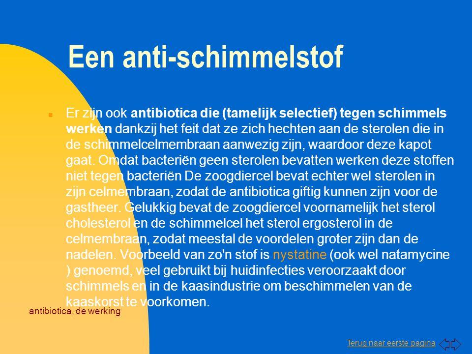 Terug naar eerste pagina antibiotica, de werking Een anti-schimmelstof n Er zijn ook antibiotica die (tamelijk selectief) tegen schimmels werken dankz
