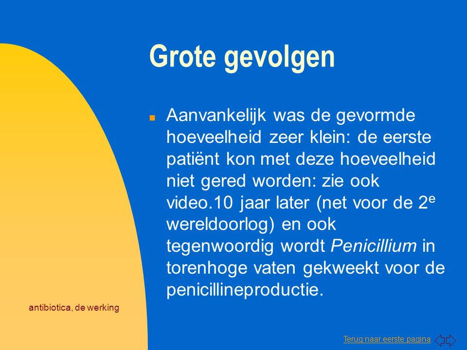 Terug naar eerste pagina antibiotica, de werking Grote gevolgen n Aanvankelijk was de gevormde hoeveelheid zeer klein: de eerste patiënt kon met deze