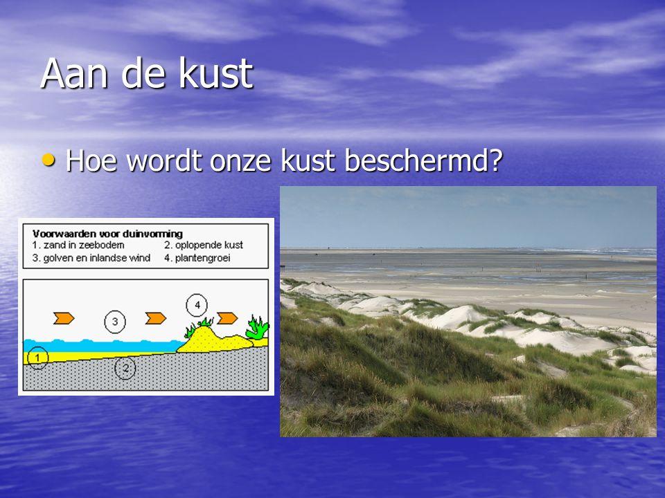 Aan de kust • Hoe wordt onze kust beschermd?