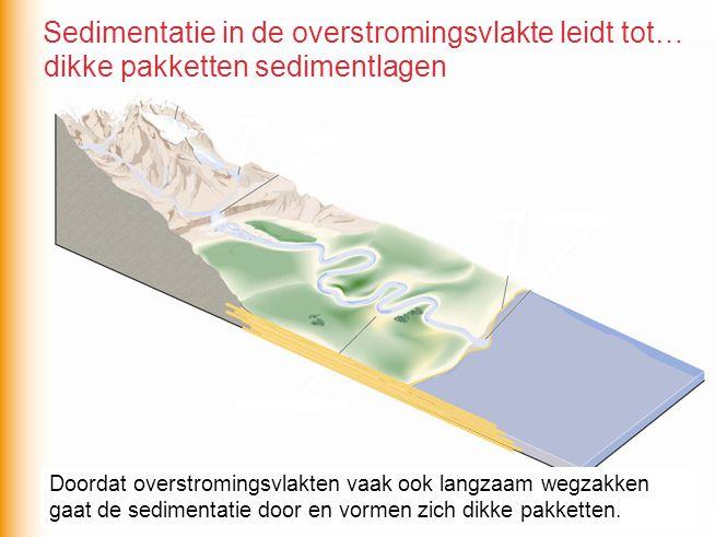 dikke pakketten sedimentlagen Doordat overstromingsvlakten vaak ook langzaam wegzakken gaat de sedimentatie door en vormen zich dikke pakketten. Sedim