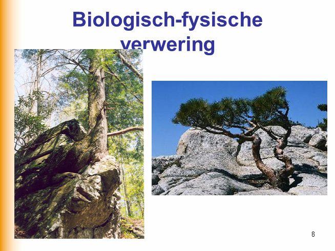 30-6-20148 Biologisch-fysische verwering