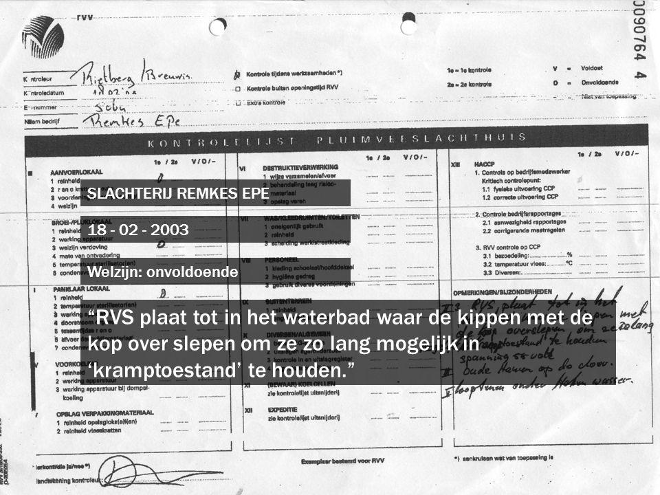 """SLACHTERIJ REMKES EPE 18 - 02 - 2003 """"RVS plaat tot in het waterbad waar de kippen met de kop over slepen om ze zo lang mogelijk in 'kramptoestand' te"""