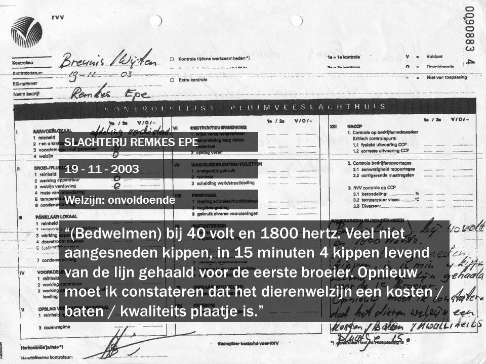 """SLACHTERIJ REMKES EPE 19 - 11 - 2003 """"(Bedwelmen) bij 40 volt en 1800 hertz. Veel niet aangesneden kippen, in 15 minuten 4 kippen levend van de lijn g"""