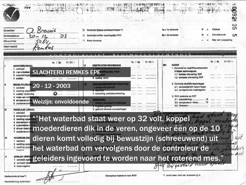 """SLACHTERIJ REMKES EPE 20 - 12 - 2003 """"""""Het waterbad staat weer op 32 volt, koppel moederdieren dik in de veren, ongeveer één op de 10 dieren komt voll"""