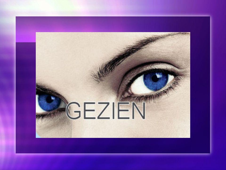 Sight Zien is een belangrijk aspect om tot conclusies te komen.