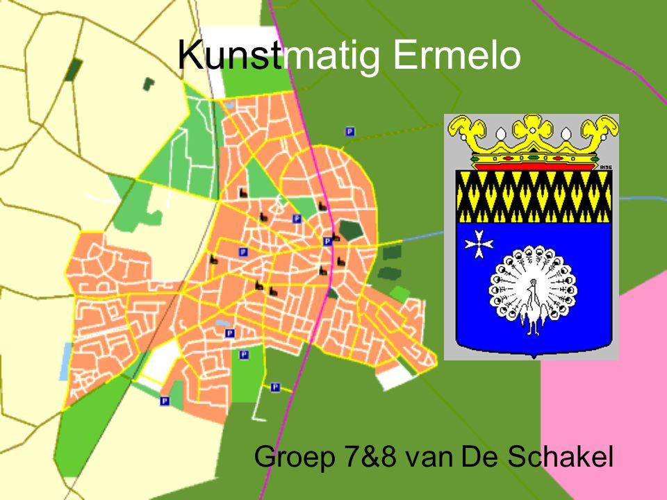 Kunstmatig Ermelo Groep 7&8 van De Schakel