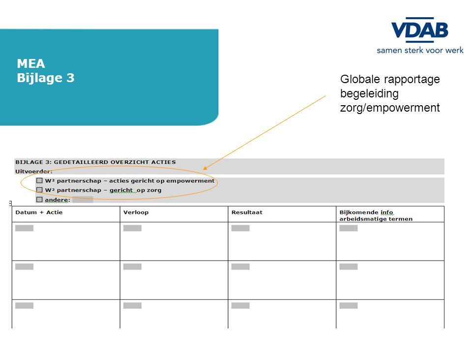 Globale rapportage begeleiding zorg/empowerment MEA Bijlage 3