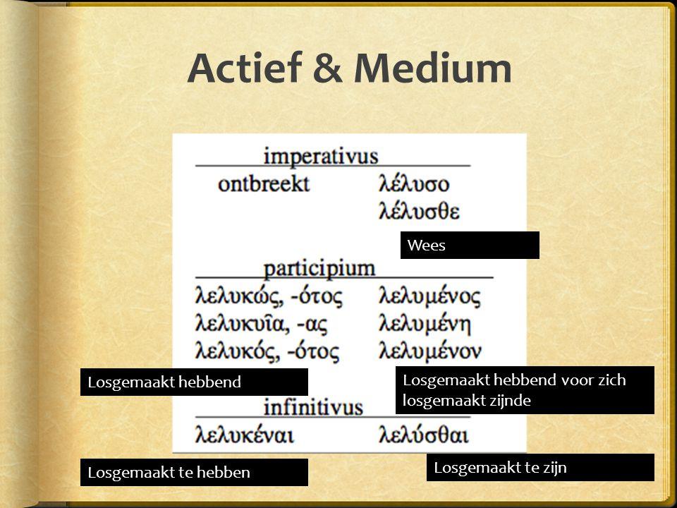 Actief & Medium Wees losgemaakt Losgemaakt hebbend voor zich losgemaakt zijnde Losgemaakt te zijn Losgemaakt te hebben Losgemaakt hebbend