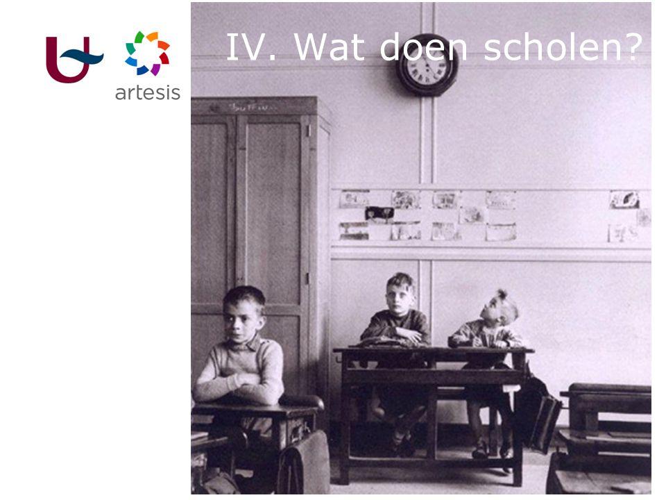 28 IV. Wat doen scholen?