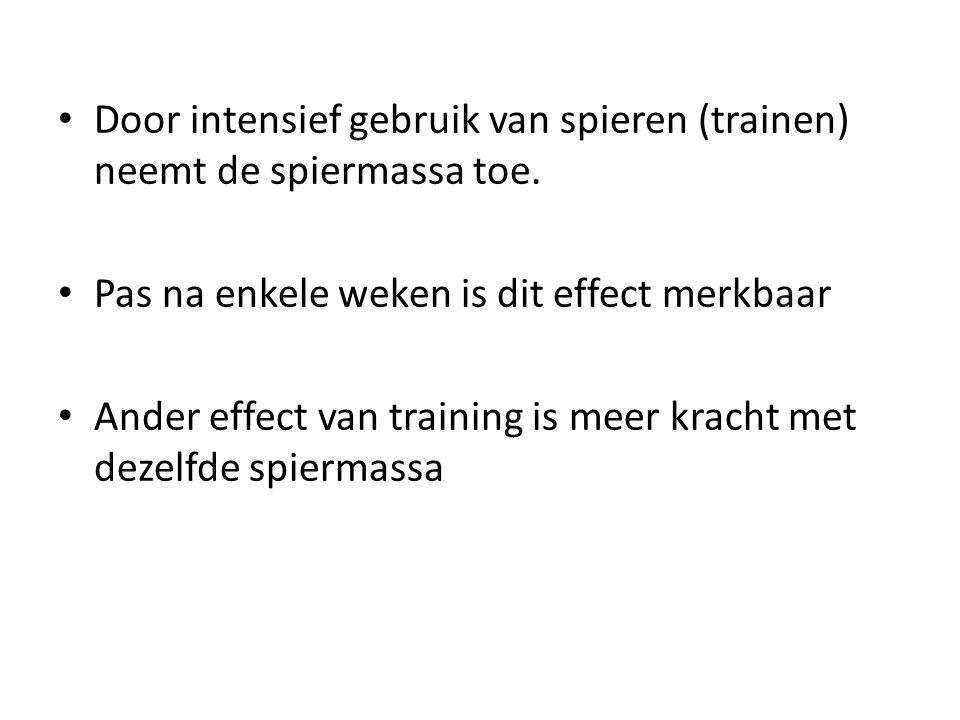 • Door intensief gebruik van spieren (trainen) neemt de spiermassa toe. • Pas na enkele weken is dit effect merkbaar • Ander effect van training is me