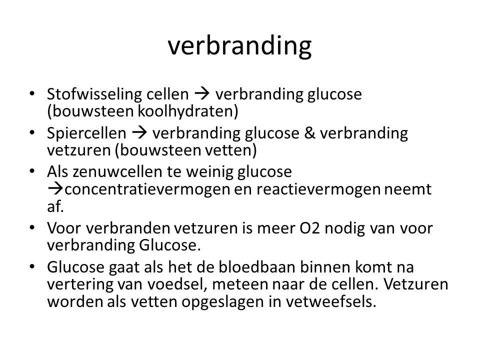 verbranding • Stofwisseling cellen  verbranding glucose (bouwsteen koolhydraten) • Spiercellen  verbranding glucose & verbranding vetzuren (bouwstee