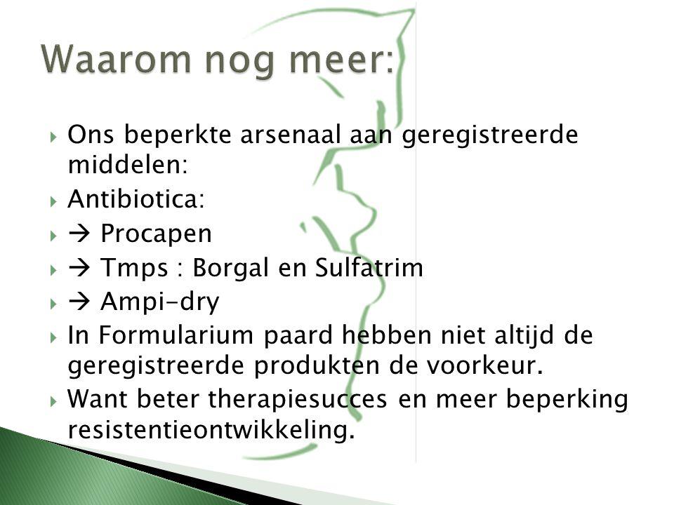  Ons beperkte arsenaal aan geregistreerde middelen:  Antibiotica:   Procapen   Tmps : Borgal en Sulfatrim   Ampi-dry  In Formularium paard he