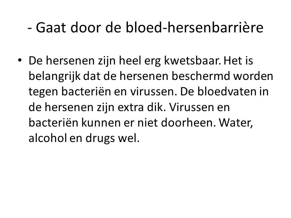 - komt in de hersenen • In de hersenen beïnvloedt alcohol de werking van de zenuwen.