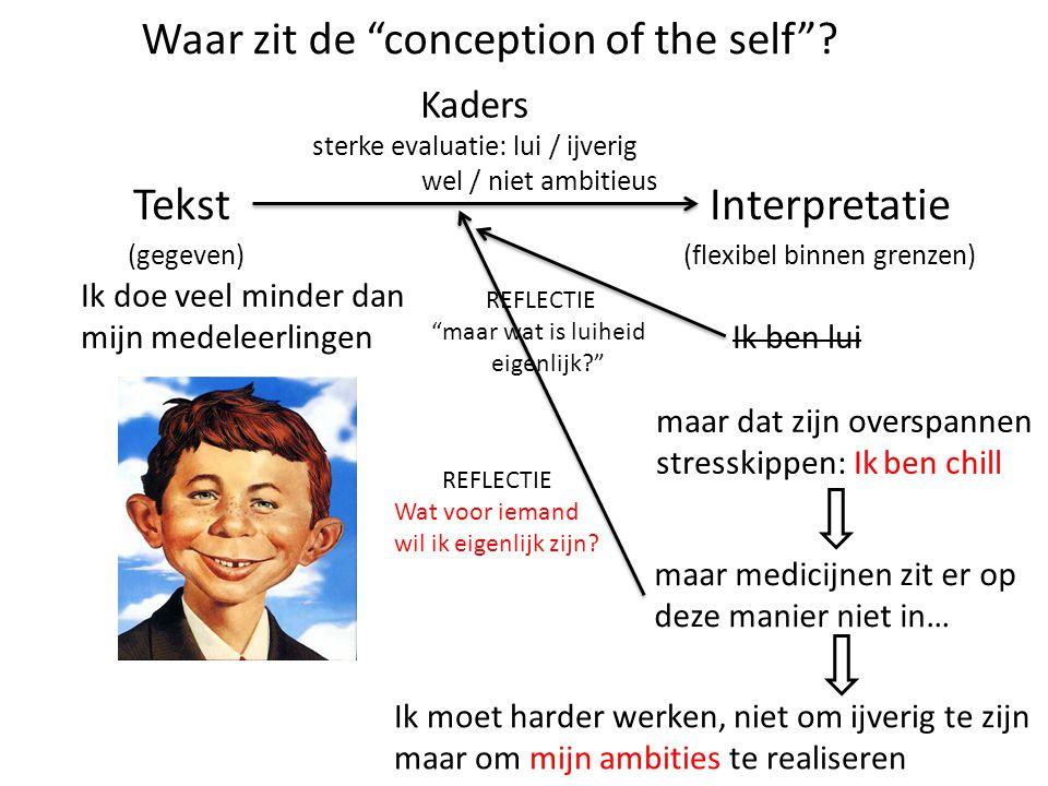 TekstInterpretatie (gegeven) (flexibel binnen grenzen) Ik doe veel minder dan mijn medeleerlingen Ik ben lui maar dat zijn overspannen stresskippen: I
