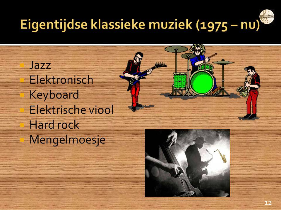  Jazz  Elektronisch  Keyboard  Elektrische viool  Hard rock  Mengelmoesje 12