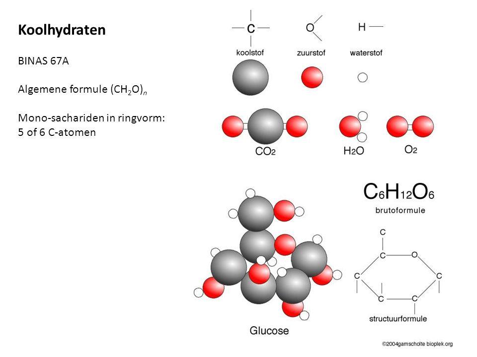 α-glucose In di-sachariden maltose en sacharose In polysachariden zetmeel en glycogeen β-glucose In di-sacharide lactose In polysacharide cellulose; vezels met grote treksterkte Koolhydraten