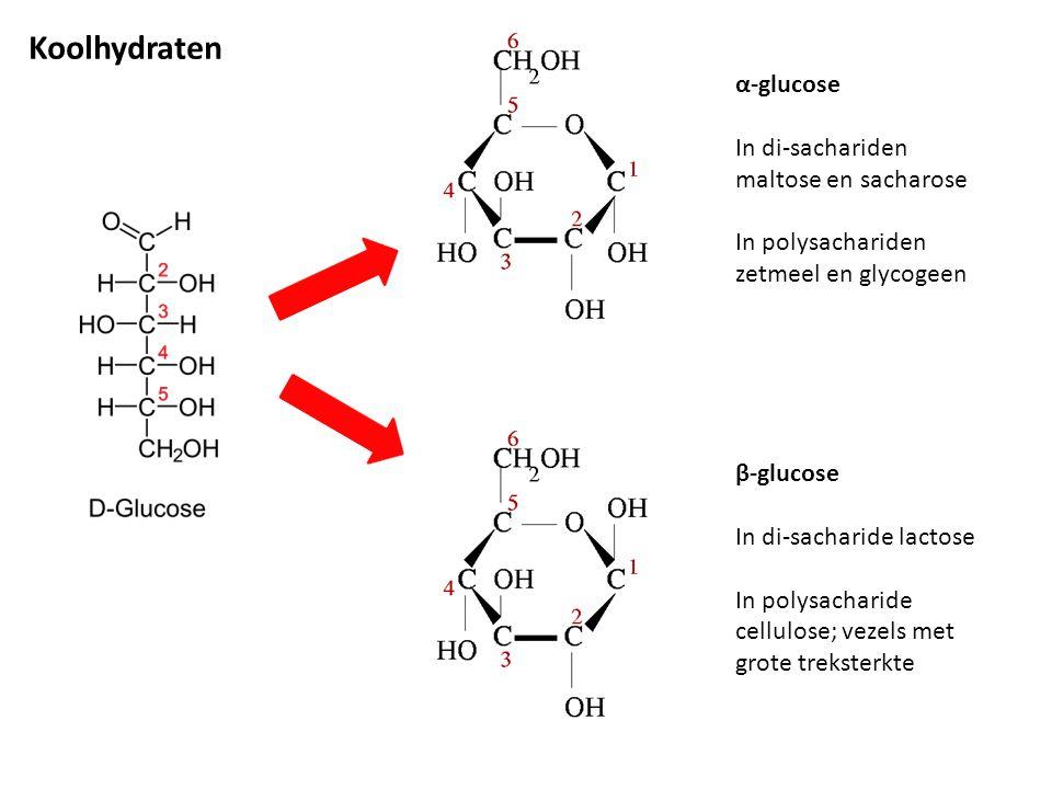 α-glucose In di-sachariden maltose en sacharose In polysachariden zetmeel en glycogeen β-glucose In di-sacharide lactose In polysacharide cellulose; v