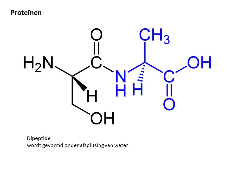 Dipeptide wordt gevormd onder afsplitsing van water Proteïnen