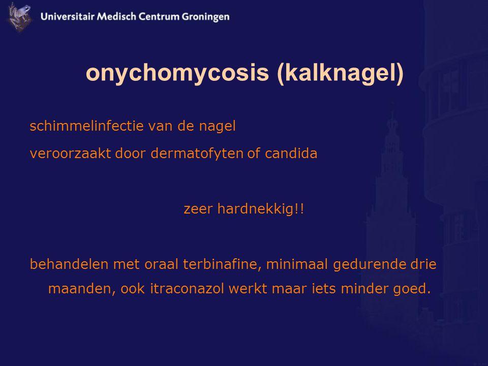 onychomycosis (kalknagel) schimmelinfectie van de nagel veroorzaakt door dermatofyten of candida zeer hardnekkig!! behandelen met oraal terbinafine, m