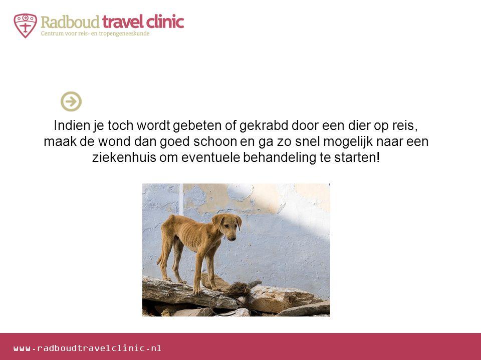 www.radboudtravelclinic.nl Indien je toch wordt gebeten of gekrabd door een dier op reis, maak de wond dan goed schoon en ga zo snel mogelijk naar een