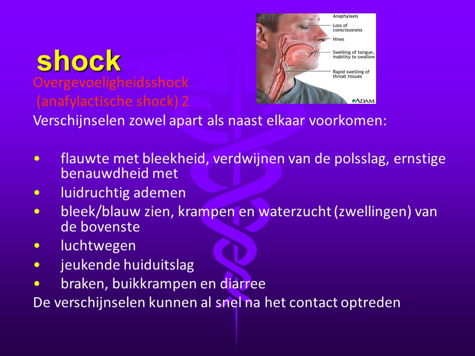 shock Overgevoeligheidsshock (anafylactische shock) 2 Verschijnselen zowel apart als naast elkaar voorkomen: • •flauwte met bleekheid, verdwijnen van
