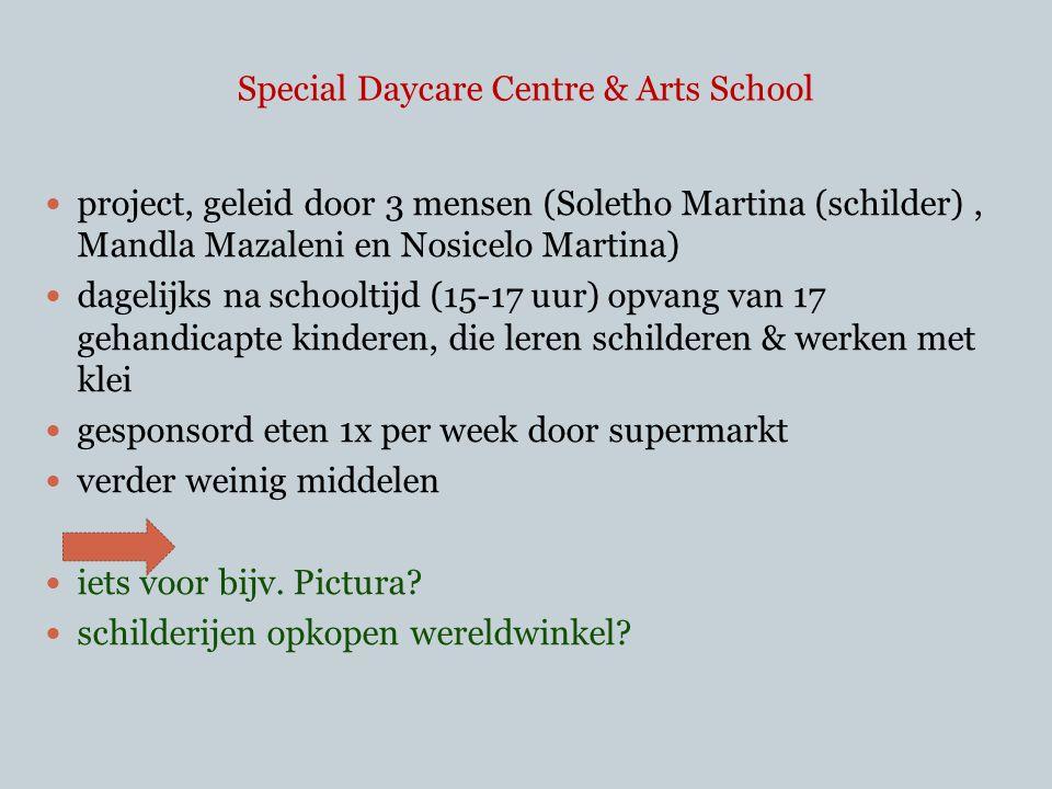  project, geleid door 3 mensen (Soletho Martina (schilder), Mandla Mazaleni en Nosicelo Martina)  dagelijks na schooltijd (15-17 uur) opvang van 17