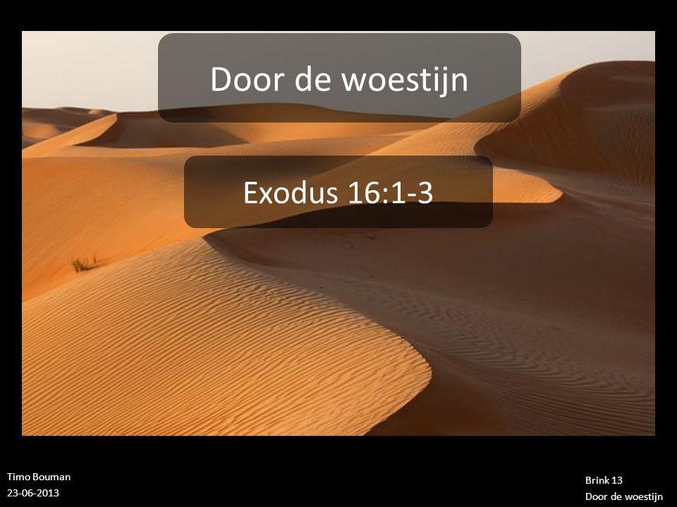 Timo Bouman 23-06-2013 Brink 13 Door de woestijn Exodus 16:1-3