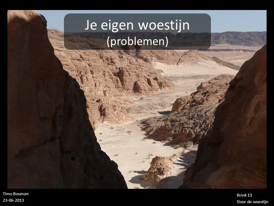Timo Bouman 23-06-2013 Brink 13 Door de woestijn Je eigen woestijn (problemen) 1.Aan de andere kant heb je Gods belofte
