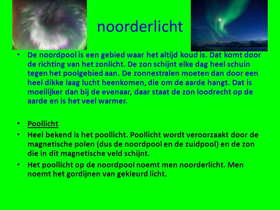 noorderlicht • De noordpool is een gebied waar het altijd koud is.