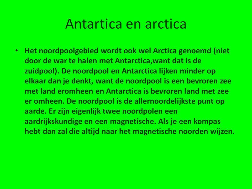 Antartica en arctica • Het noordpoolgebied wordt ook wel Arctica genoemd (niet door de war te halen met Antarctica,want dat is de zuidpool).