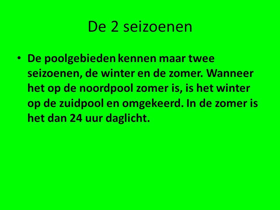 De 2 seizoenen • De poolgebieden kennen maar twee seizoenen, de winter en de zomer.