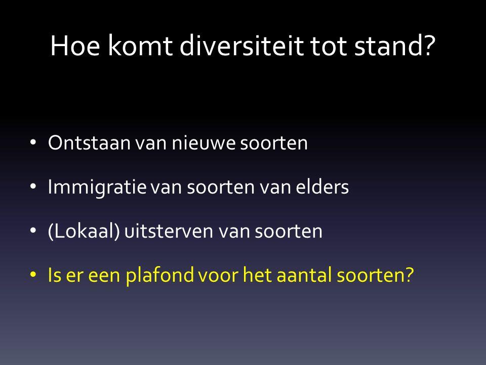 Hoe komt diversiteit tot stand.