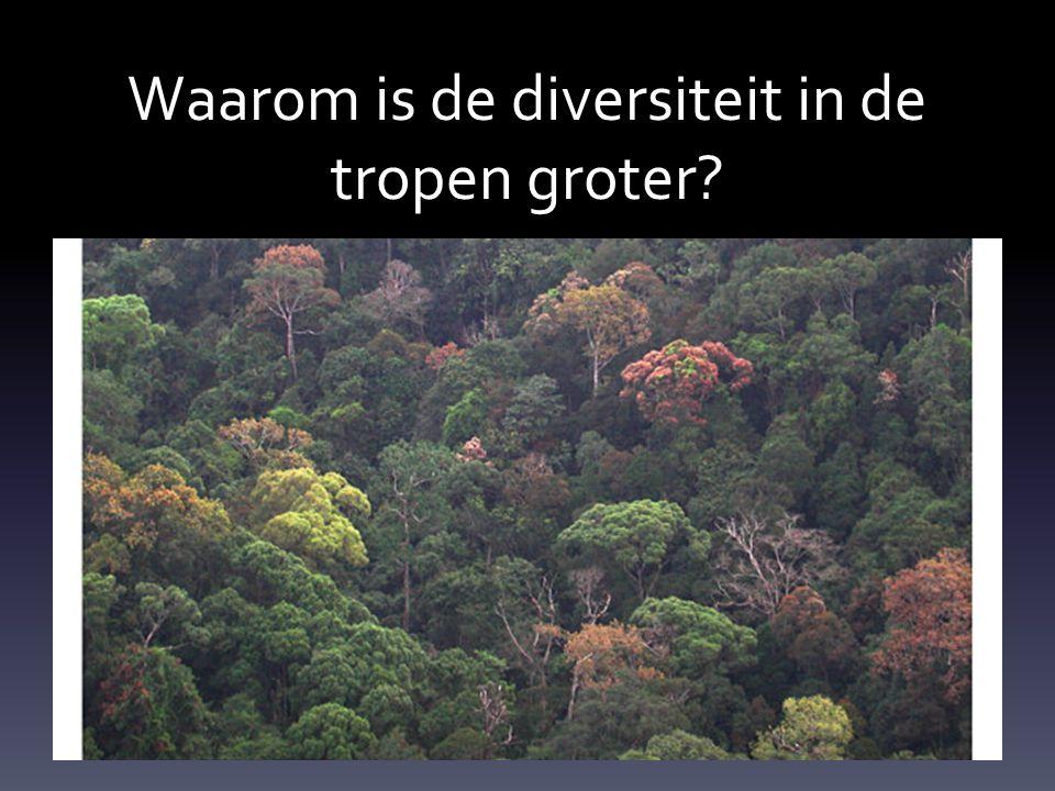 Waarom is de diversiteit in de tropen groter?