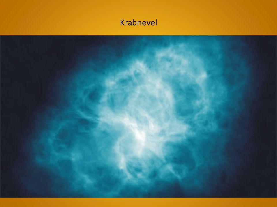 Krabnevel
