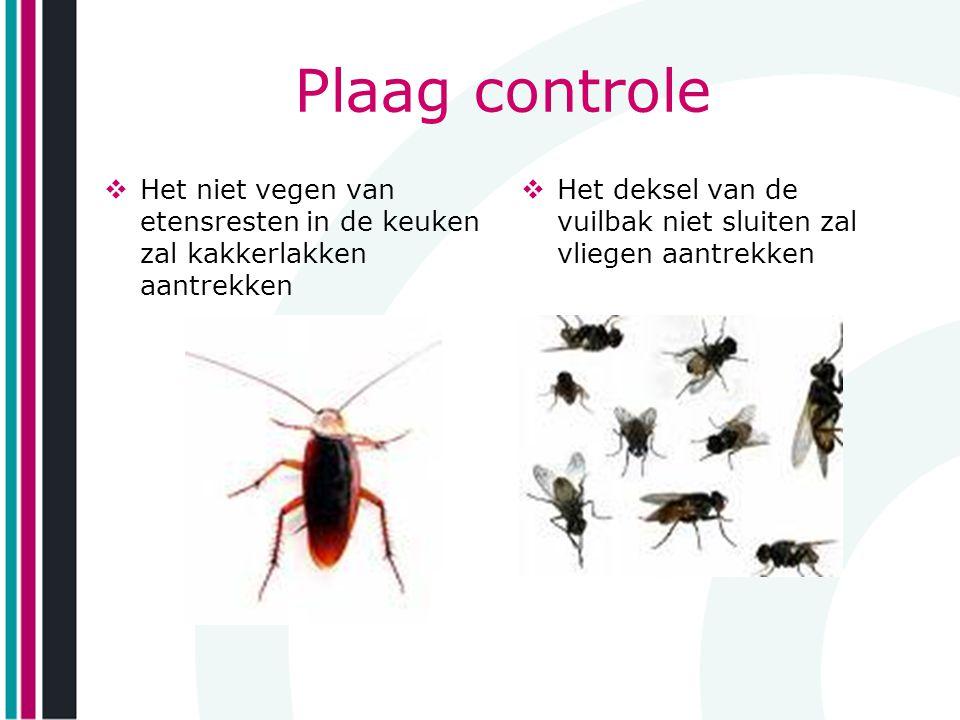 Plaag controle  Het niet vegen van etensresten in de keuken zal kakkerlakken aantrekken  Het deksel van de vuilbak niet sluiten zal vliegen aantrekk