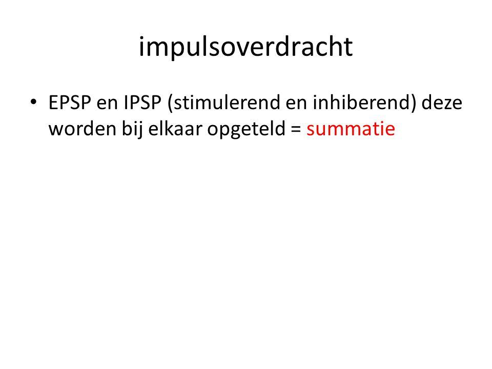 impulsoverdracht • EPSP en IPSP (stimulerend en inhiberend) deze worden bij elkaar opgeteld = summatie