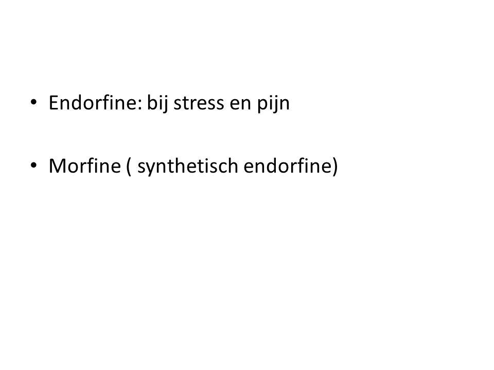 • Endorfine: bij stress en pijn • Morfine ( synthetisch endorfine)
