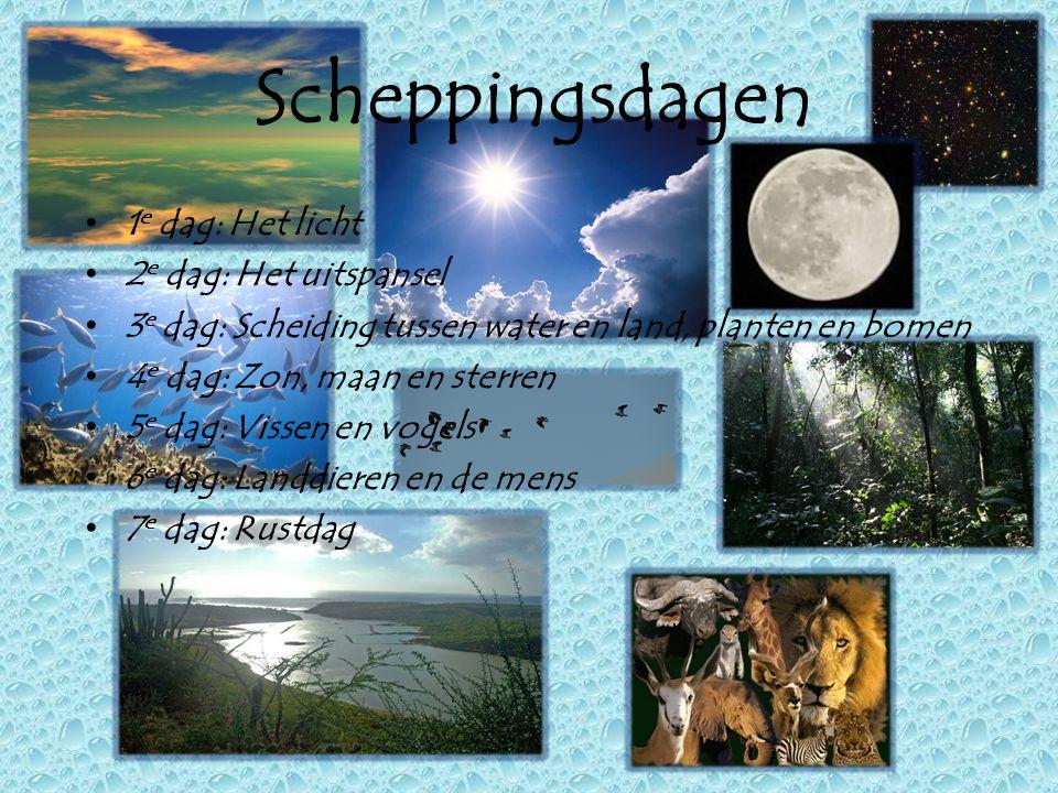 Scheppingsdagen • 1 e dag: Het licht • 2 e dag: Het uitspansel • 3 e dag: Scheiding tussen water en land, planten en bomen • 4 e dag: Zon, maan en ste