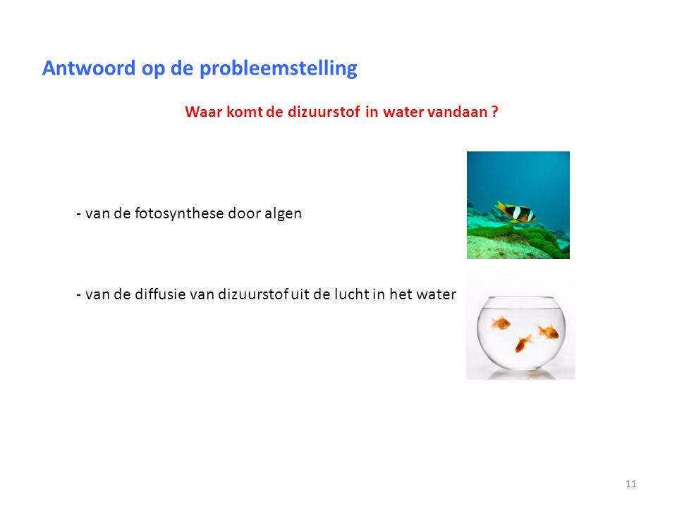 Antwoord op de probleemstelling Waar komt de dizuurstof in water vandaan ? - van de fotosynthese door algen - van de diffusie van dizuurstof uit de lu