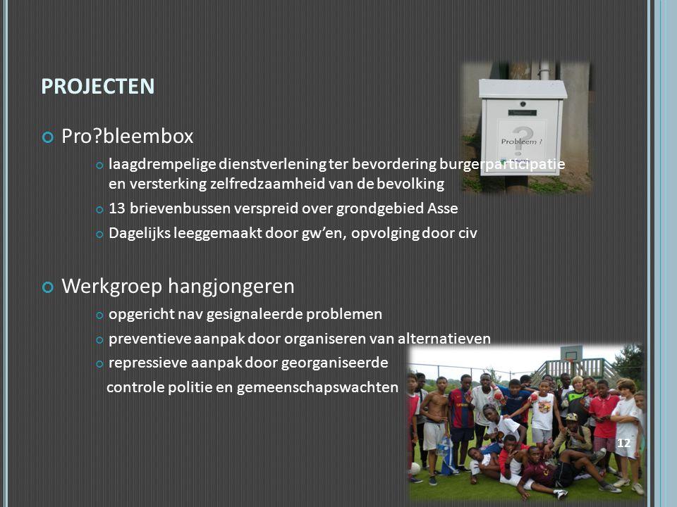 PROJECTEN Pro?bleembox laagdrempelige dienstverlening ter bevordering burgerparticipatie en versterking zelfredzaamheid van de bevolking 13 brievenbus