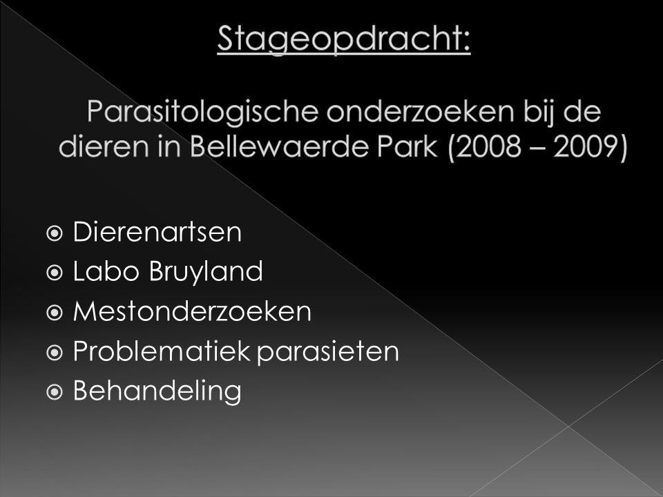  Dierenartsen  Labo Bruyland  Mestonderzoeken  Problematiek parasieten  Behandeling