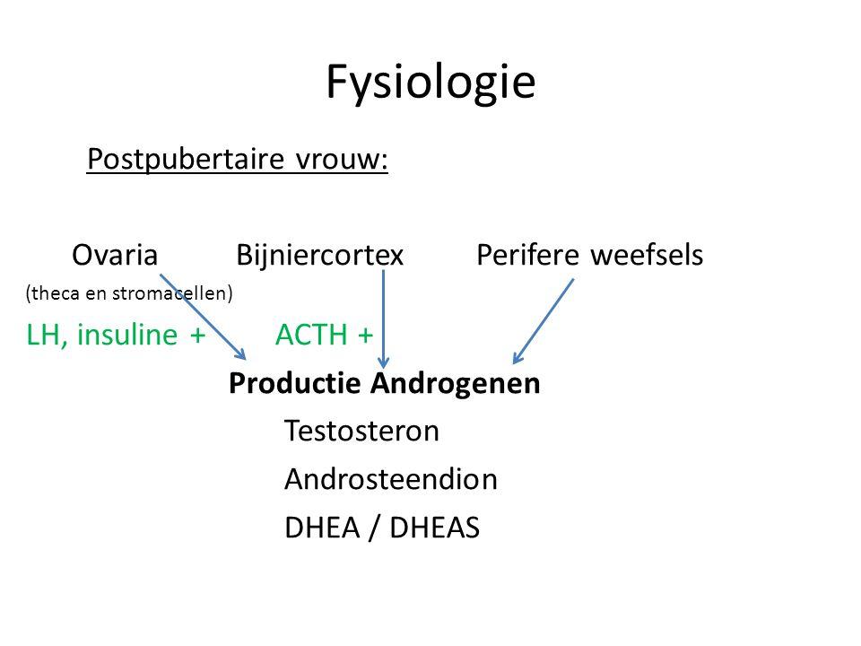 Fysiologie Postpubertaire vrouw: Ovaria Bijniercortex Perifere weefsels (theca en stromacellen) LH, insuline + ACTH + Productie Androgenen Testosteron