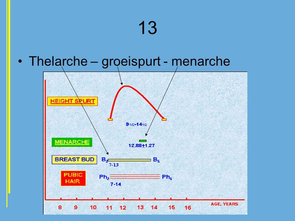 13 •Thelarche – groeispurt - menarche