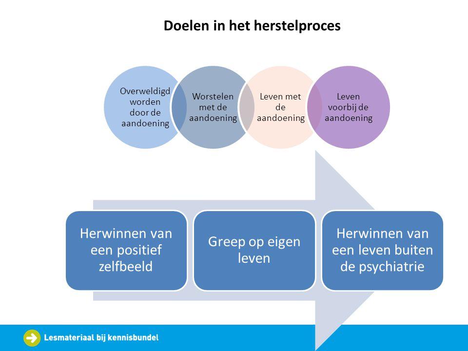 Overweldigd worden door de aandoening Worstelen met de aandoening Leven met de aandoening Leven voorbij de aandoening Doelen in het herstelproces Herw