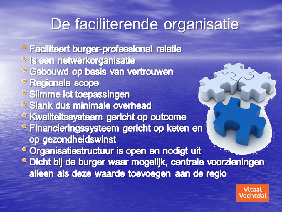 De faciliterende organisatie