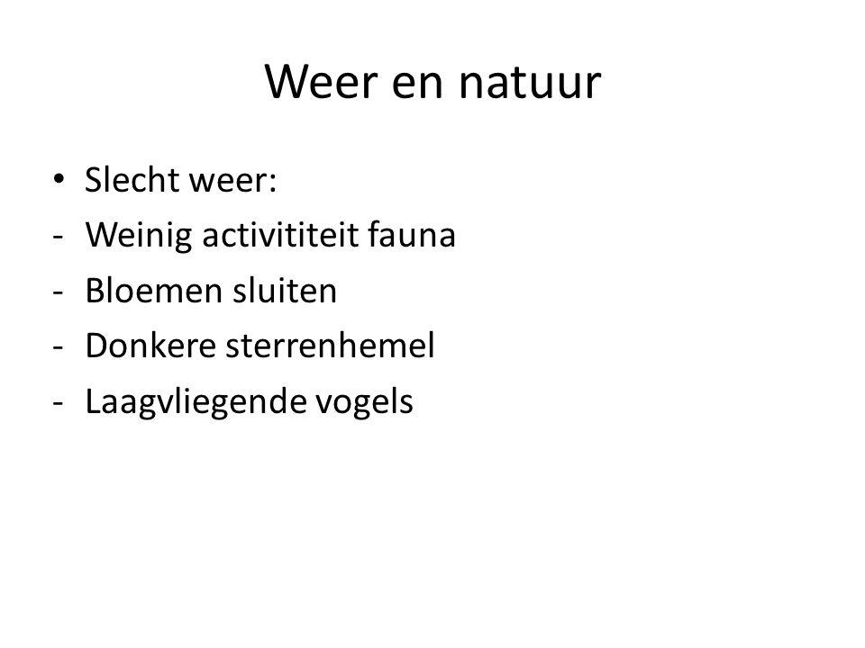 Weer en natuur • Mooi weer: -Bedrijvige fauna (insecten, vogels,…) -Bloemen openen zich -Heldere sterrenhemel -Vogels vliegen hoog