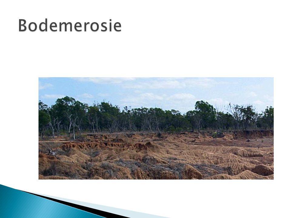  Verwering: Het uiteenvallen van hard gesteente onder invloed van het weer en door planten  1.
