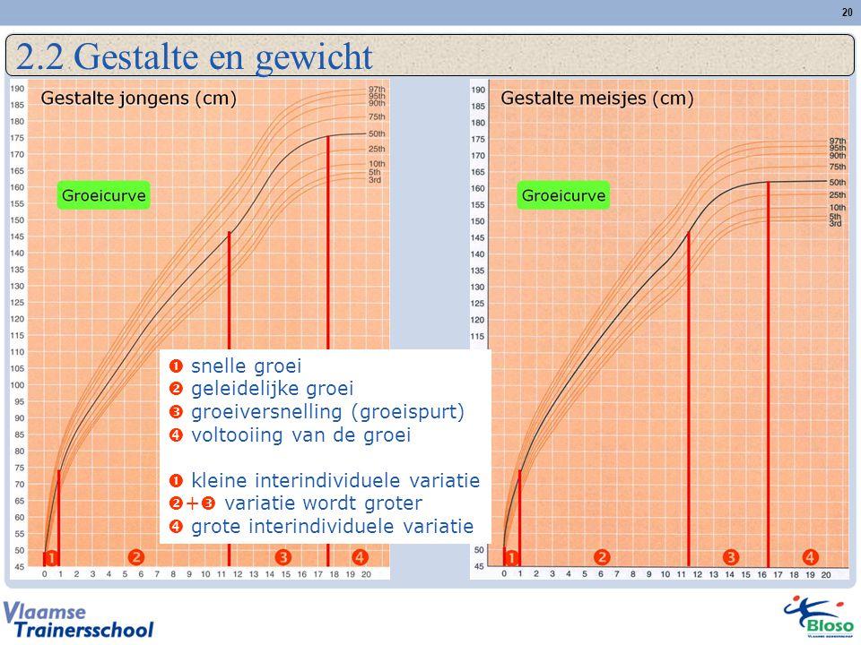 20 2.2 Gestalte en gewicht  snelle groei  geleidelijke groei  groeiversnelling (groeispurt)  voltooiing van de groei  kleine interindividuele variatie  +  variatie wordt groter  grote interindividuele variatie
