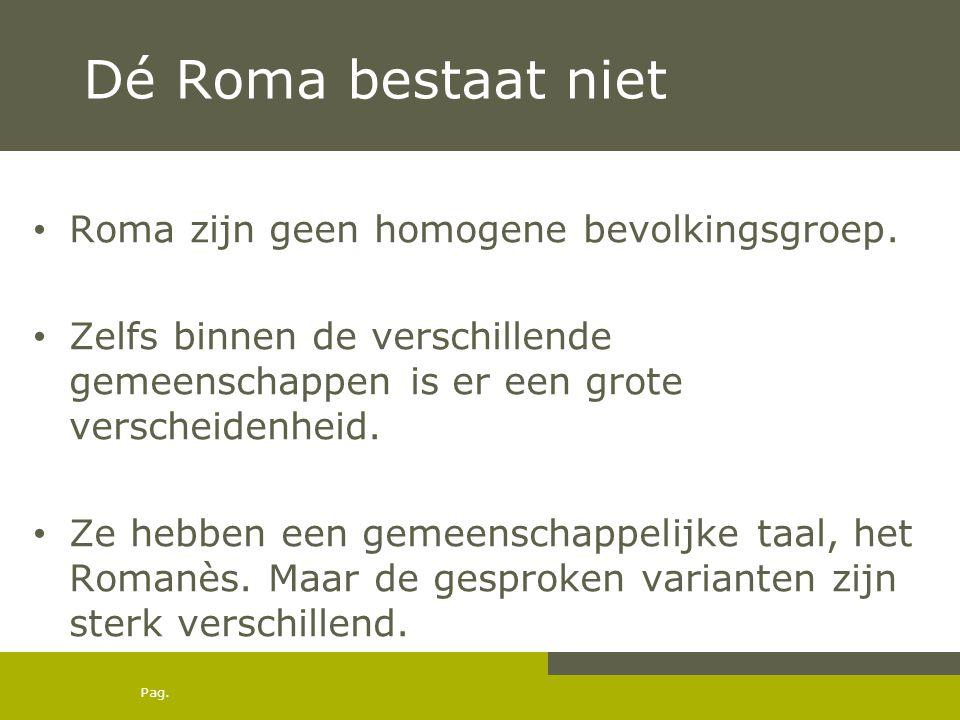 Pag. Dé Roma bestaat niet • Roma zijn geen homogene bevolkingsgroep. • Zelfs binnen de verschillende gemeenschappen is er een grote verscheidenheid. •