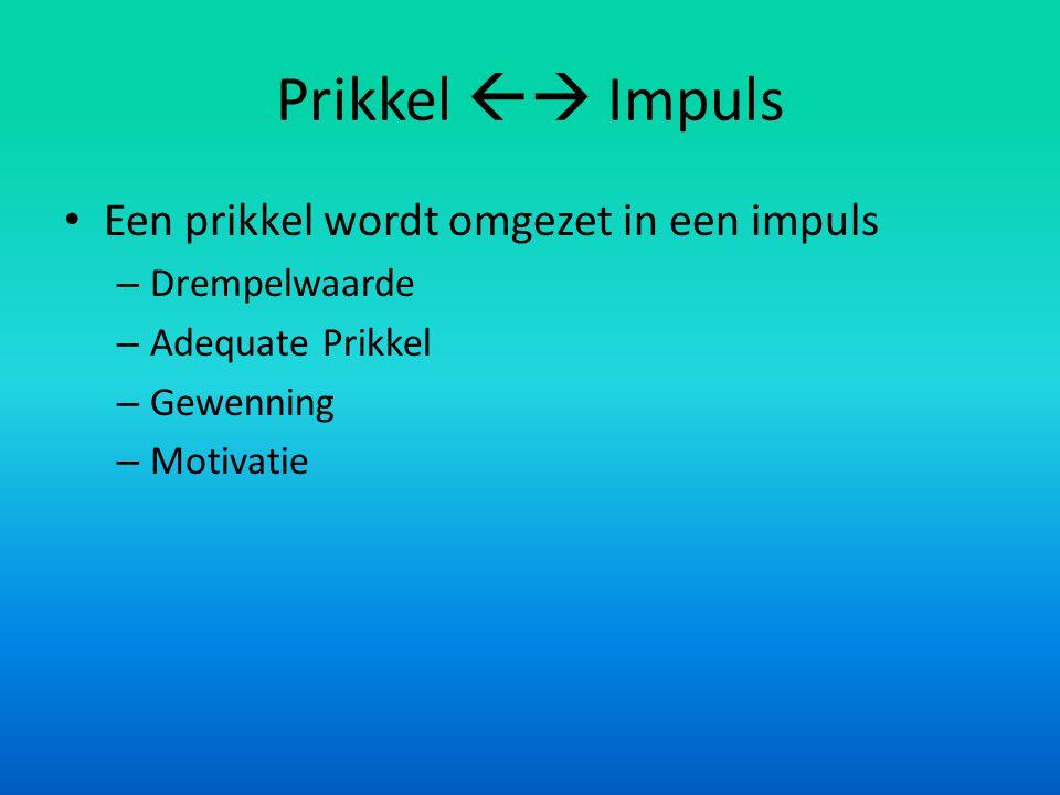 Prikkel  Impuls • Een prikkel wordt omgezet in een impuls – Drempelwaarde – Adequate Prikkel – Gewenning – Motivatie